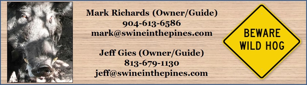Swine in the Pines - Guided Wild Hog Hunts - Starke, Florida - Hog Hunting Florida Style