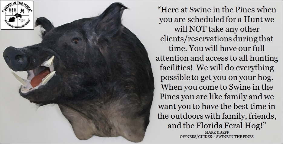 Reservations at Swine In The Pines Hog Hunting Camp - Guided Hog Hunts