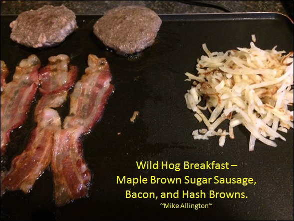 Hog from Swine in the Pines...Sausage from Milk & Honey Farms Meat Processing...see how easy it can be!