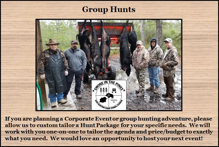 Group Hunts at Swine In The Pines