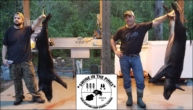 Andrew and Luciano with their 89lb Wild Boar and 121lb Wild Sow taken at Swine In The Pines Hog Hunting Camp in North Florida
