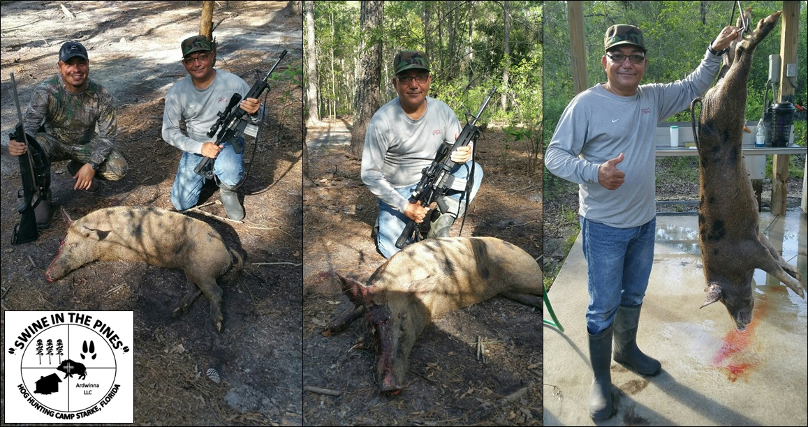 Al took this 100lb Wild Sow on a Guided Hog Hunt at Swine In The Pines in Starke, Florida