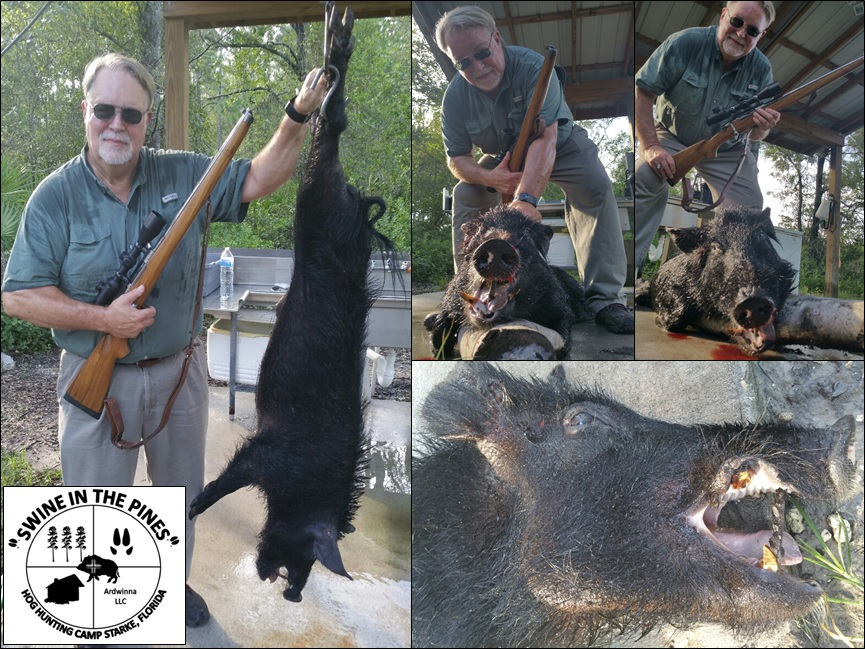James with his 110lb Wild Boar with 2in cutters! taken at Swine In The Pines Wild Hog Hunting Camp