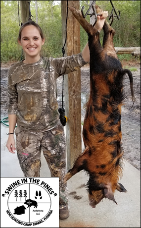Jessica took this Unique Colored 75lb Wild Boar on a Guided Hog Hunt at Swine In The Pines in Starke, Florida
