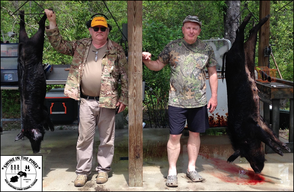 Phil and Mike droped these Wild Hogs at Swine In The Pines North Florida's Hog Hunting Camp