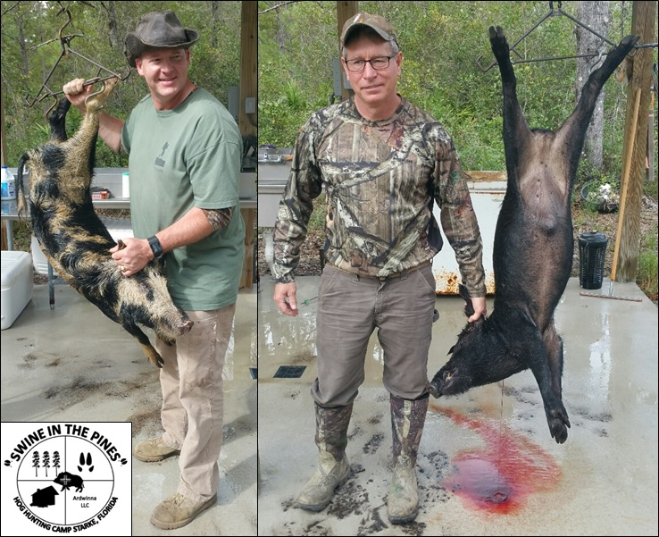 Stuart and Wayne with their Awesome Hogs! 76lb/88lb Boars from Swine In The Pines North Florida Hog Hunting Camp