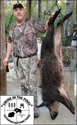 Willy with his 150lb Sow after a Guided Hog Hunt at Swine In The Pines in North Florida