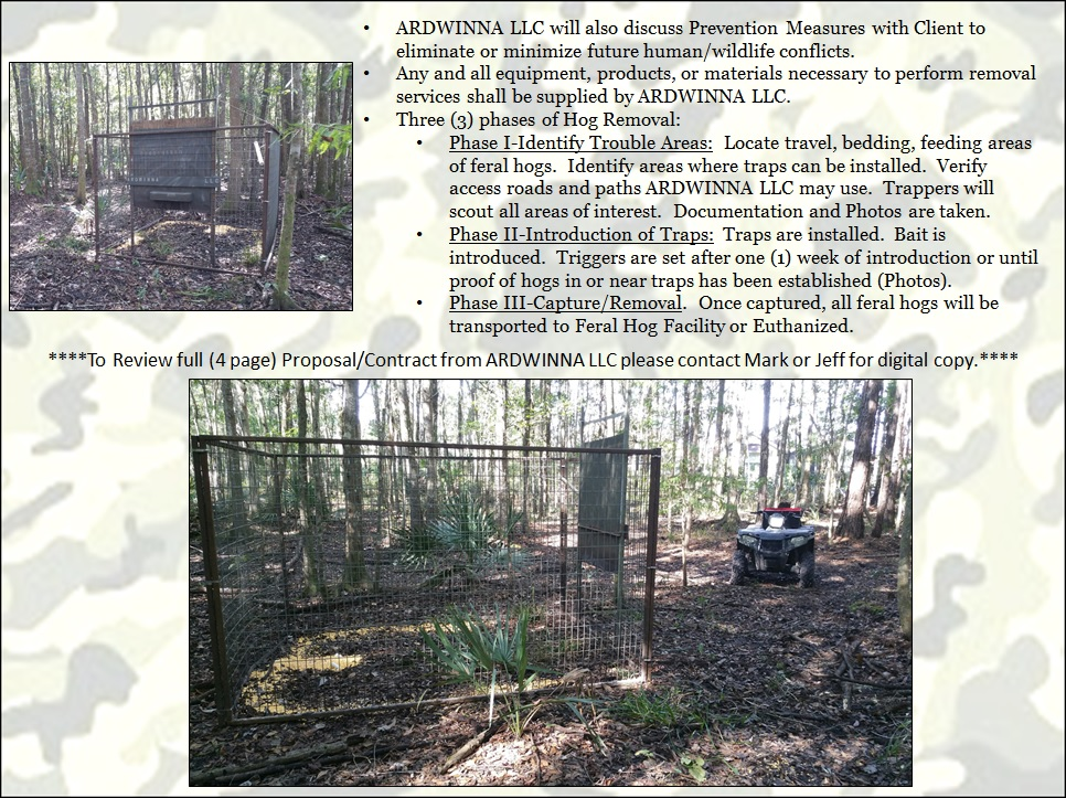 Feral Hog & Swine Removal from Swine In The Pines
